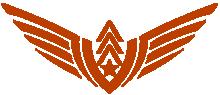 Aero Aviation Academy